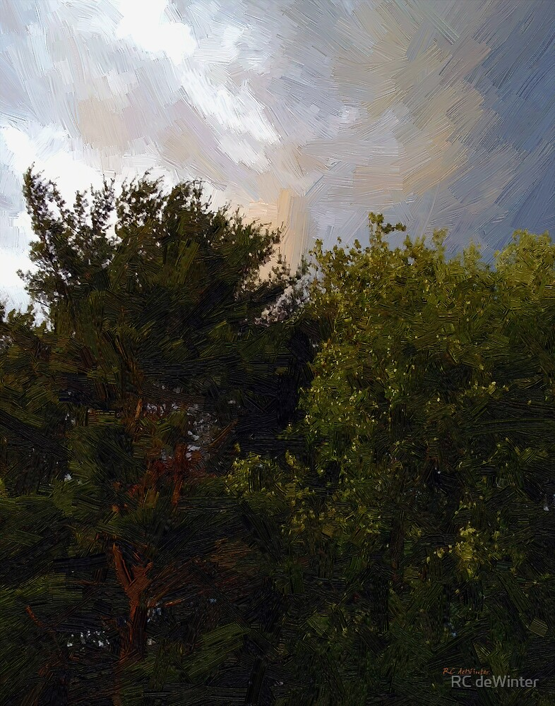 Just Before the Rain by RC deWinter