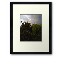 Just Before the Rain Framed Print