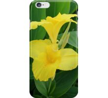 Closeup Of A Tropical Yellow Canna Lily iPhone Case/Skin