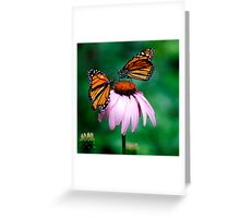 Flying Flowers... Greeting Card