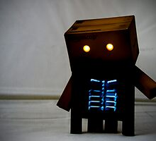 Danbo's X-ray by James Richardson