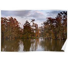 Swamp at Sunrise, Lake Martin, Breaux Bridge, Louisiana Poster