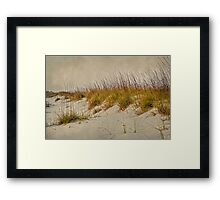 Beach Grass and Sugar Sand Framed Print