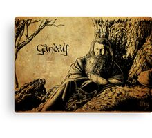Gandalf the Grey Canvas Print