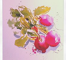what a lovely bunch of radishes by Rebecca Yoxall