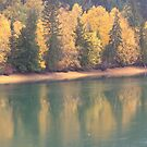 Fall on the North Thompson River by Kathi Arnell