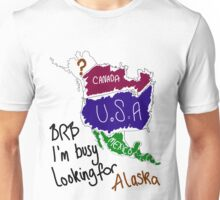 I'm busy looking for Alaska Unisex T-Shirt