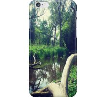Secret Hideaway iPhone Case/Skin