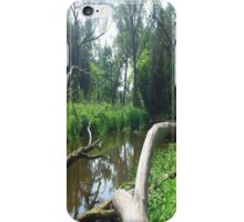 Secret Hideaway Original iPhone Case/Skin