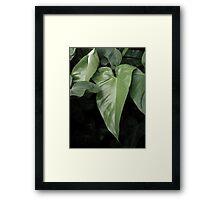 ©HCS  Skinny Green Framed Print