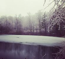 Half-Frozen Pond by Michael & Alyssa Straus