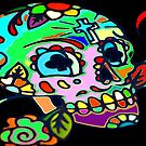 The Psychedelic Skull by Brian Gaynor