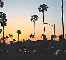 California Palm Trees  by adrianadamian
