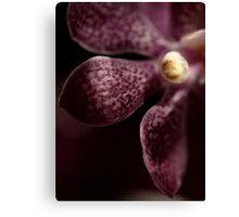 Purple Canvas Print