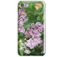 Lilac Blossoms iPhone Case/Skin