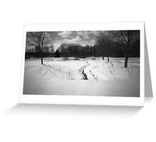 Pinhole Study: Winter in Waterloo No. 2 Greeting Card