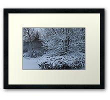 beautiful snow scene Framed Print