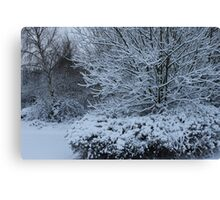 beautiful snow scene Canvas Print