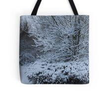 beautiful snow scene Tote Bag