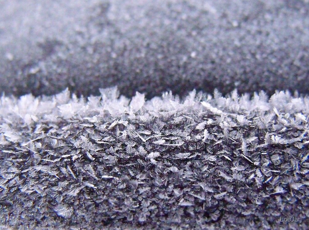 273/365 frosty flakes by LouJay