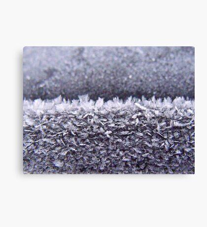 273/365 frosty flakes Canvas Print