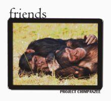 Chimpanzee Friends by Amy Atherton