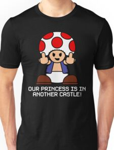 Our Princess Is In Another Castle T-Shirt