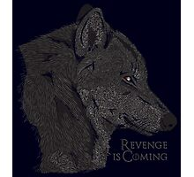 Revenge is coming Photographic Print