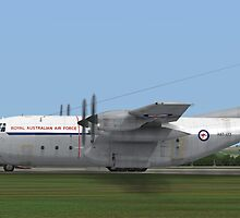 Royal Australian Air Force C-130 Hercules by Walter Colvin