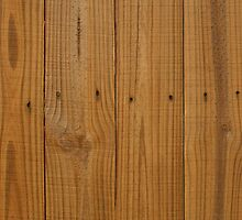 Weathered Wood Fence by GreenSpeed