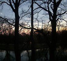 Dawn II by LemonLion