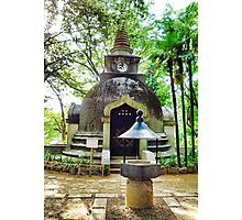 Great Buddhist Pagoda Photographic Print