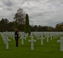 The American Cemetery in Normandy by Ren Provo