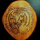 Tiger Portrait. by Livvy Young