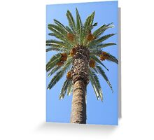 Date Palm Tree Greeting Card