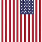 US Flag by BlancaMF