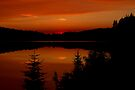 Sunset on Brewer Lake, Algonquin Park by Jim Cumming
