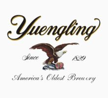 Yeungling, America's Oldest Brewery by Mrmusicman97
