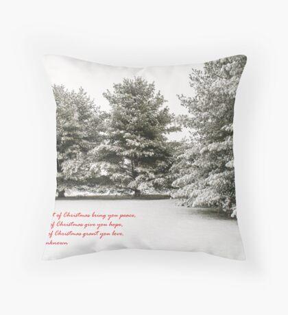 ****  CHRISTMAS CARD  **** Throw Pillow