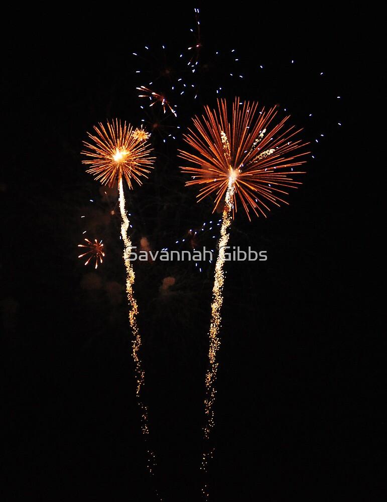 July 4-th Fireworks 2013 by Savannah Gibbs