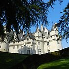 Chateau d'Usse by hans p olsen