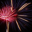 Red, White, and Blue fireworks by johntbell