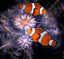 Clownfishes in fractal circus II. by art-ZeST