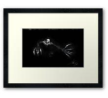 The Rake Framed Print