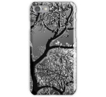 Tree with Sun and Snow 1 BW iPhone Case/Skin