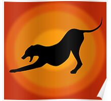 Silhouette of a Stretching and Yawning Dog on Orange Background Poster