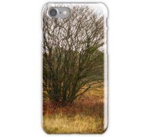 Heathland autumn symphony iPhone Case/Skin