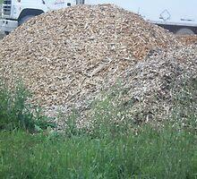 Mulch pile by Cherryladi02