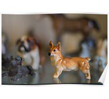china animals Poster