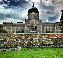 Montana State Capitol Building  by Sue Morgan